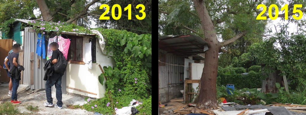ISS-HK approved hut under a tree (2013 vs 2015)